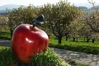 Obsthof Schörlin Huttingen