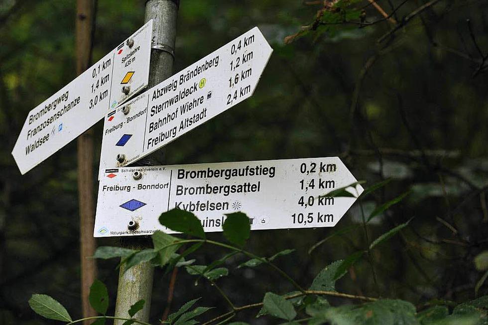 Sternwald - Freiburg