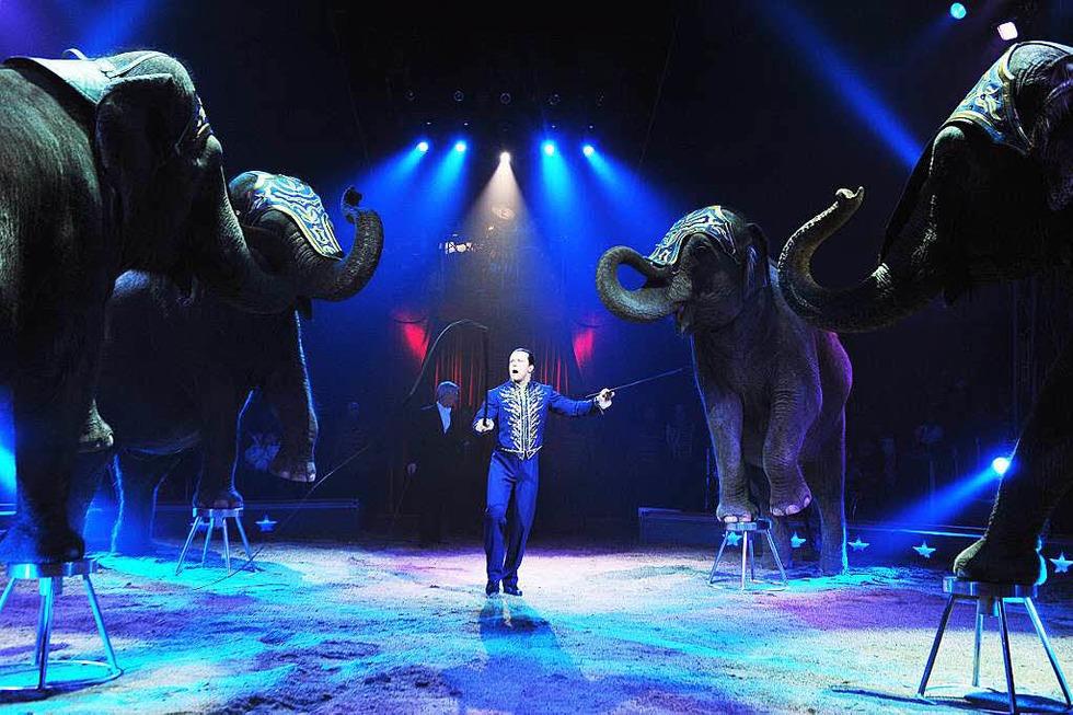 Zelt des Zirkus Knie - Basel