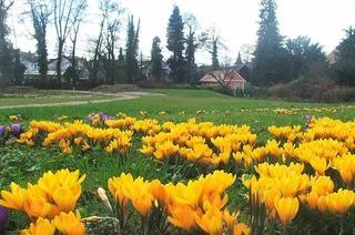 Anton-Danner-Park