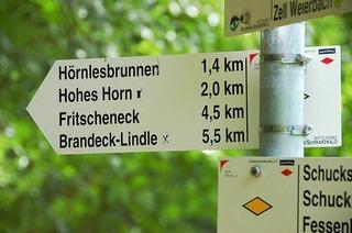 Fritscheneck