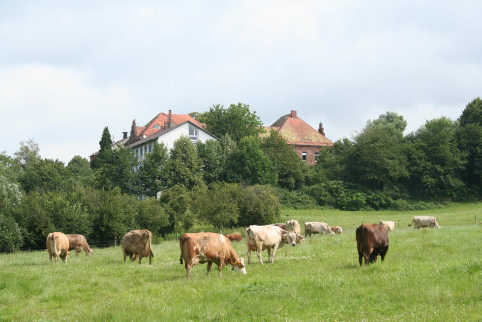Domäne Hochburg - Emmendingen