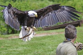 Vogelpark Steinen (Nähe Lörrach)