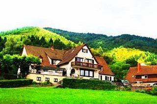 Landhotel Gr�ner Baum (Sehringen)