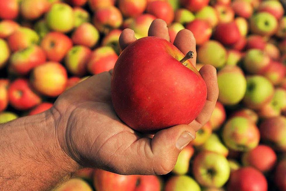 Obst-und Gemüsebau Lay - Eichstetten