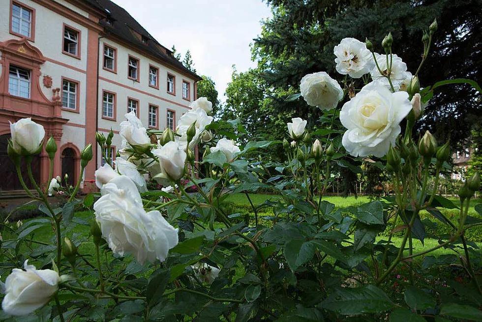 Klostergarten St. Trudpert - Münstertal