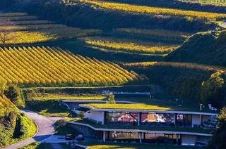 Kellerwirtschaft im Weingut Keller Oberbergen