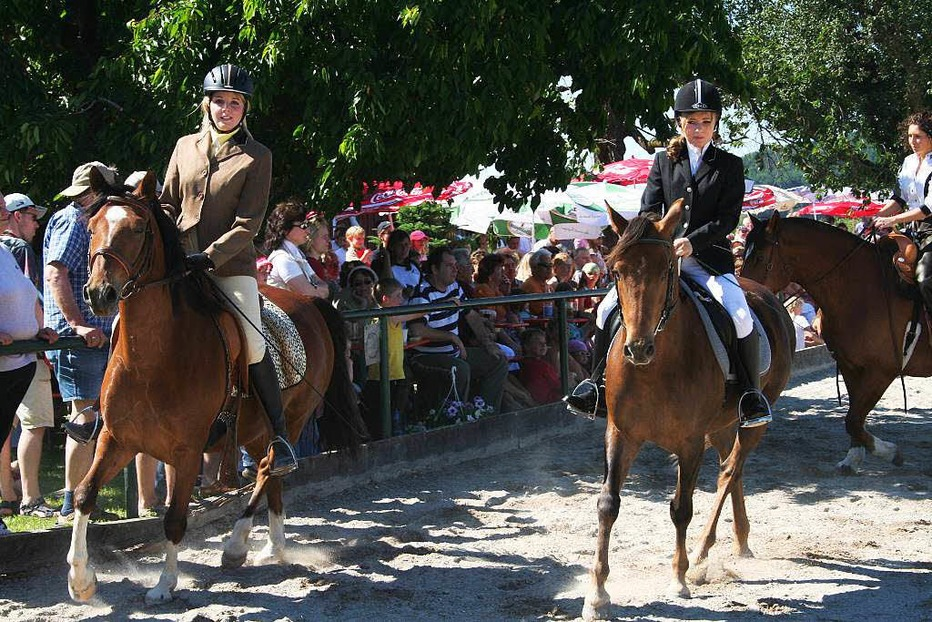 Blattmanns Pferdehof (Buchholz) - Waldkirch