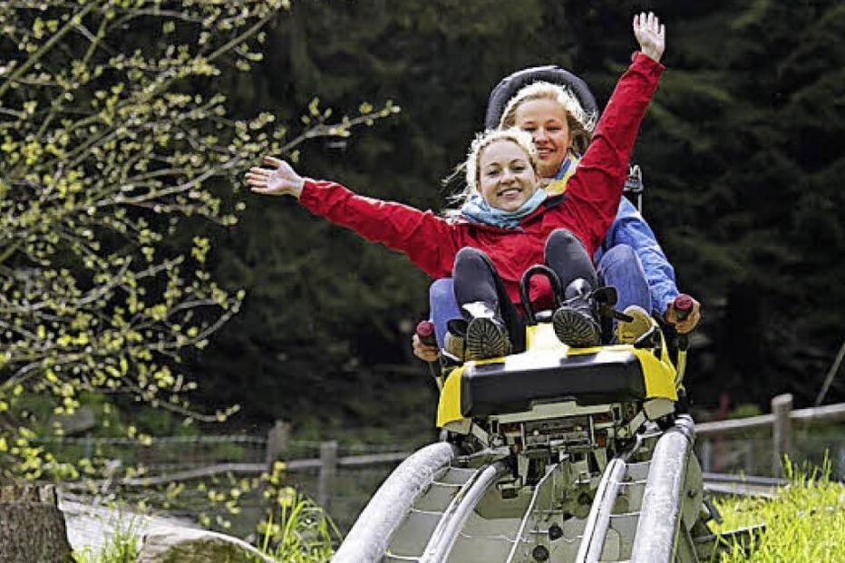 Steinwasen-Park (Oberried) - Badische Zeitung TICKET