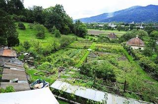 Kuchelgarten der Freiburger Kartaus