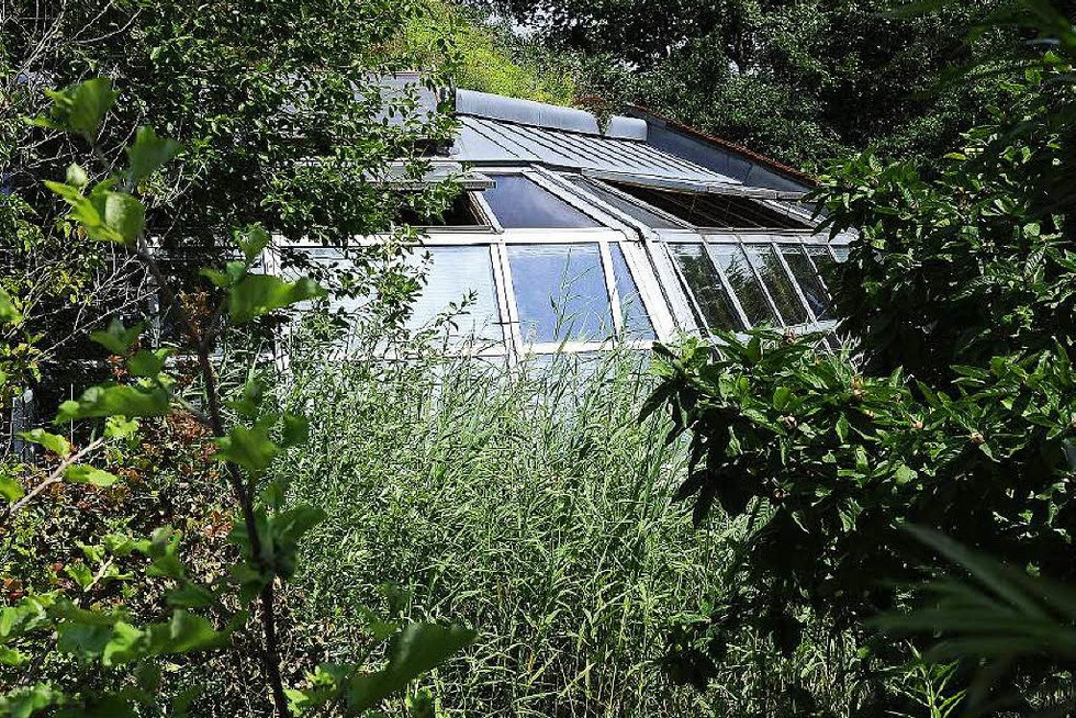 Biogarten der Ökostation - Freiburg