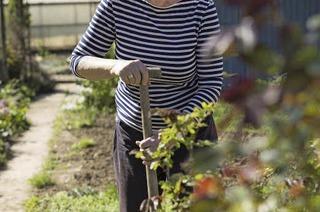 """Gartenexpertin: """"Vergesst den Boden nicht"""""""
