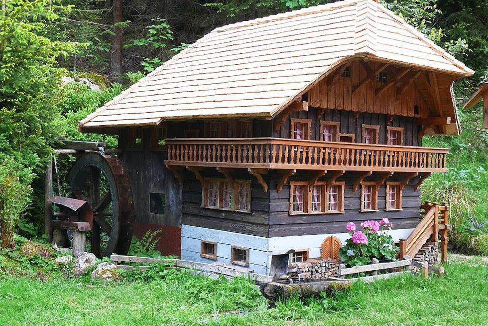 Moosmühle Blasiwald - Schluchsee