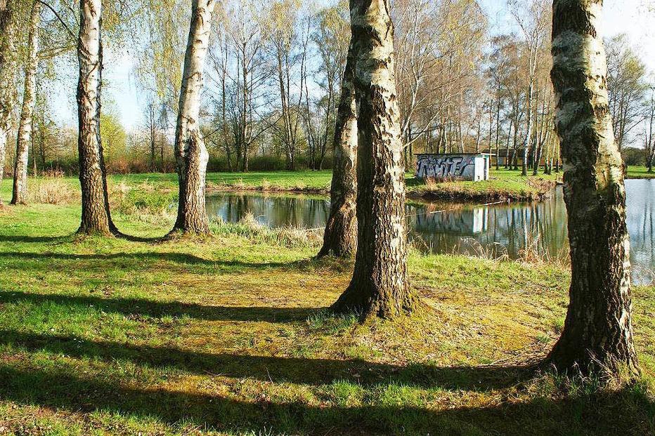 Köndringer Baggersee (Niederwaldsee) - Teningen