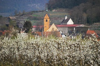 Kath. Kirche St. Michael (Niederrotweil)