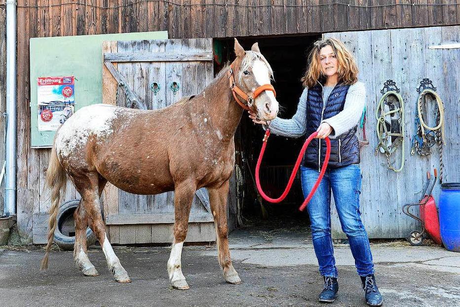 Fancy Farm - Ponyhof im Dreisamtal - Kirchzarten