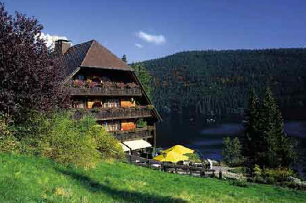 Hotel Alemannenhof - Hinterzarten