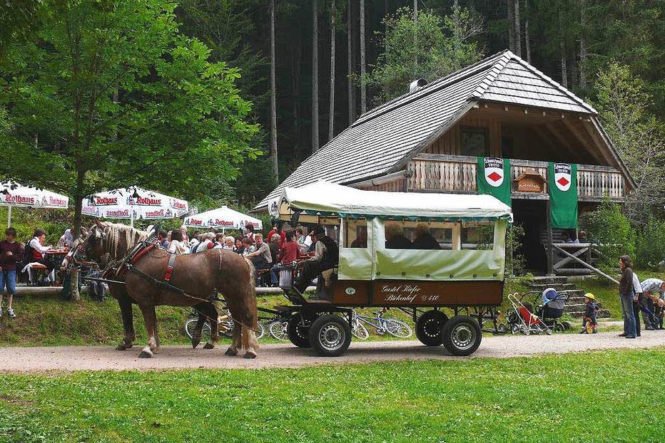 Hummelhütte im Steinatal - Schluchsee