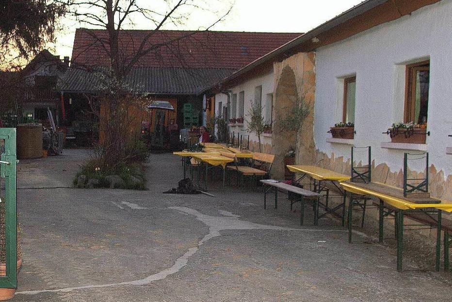 Arnos Strau�i (Seefelden) - Buggingen