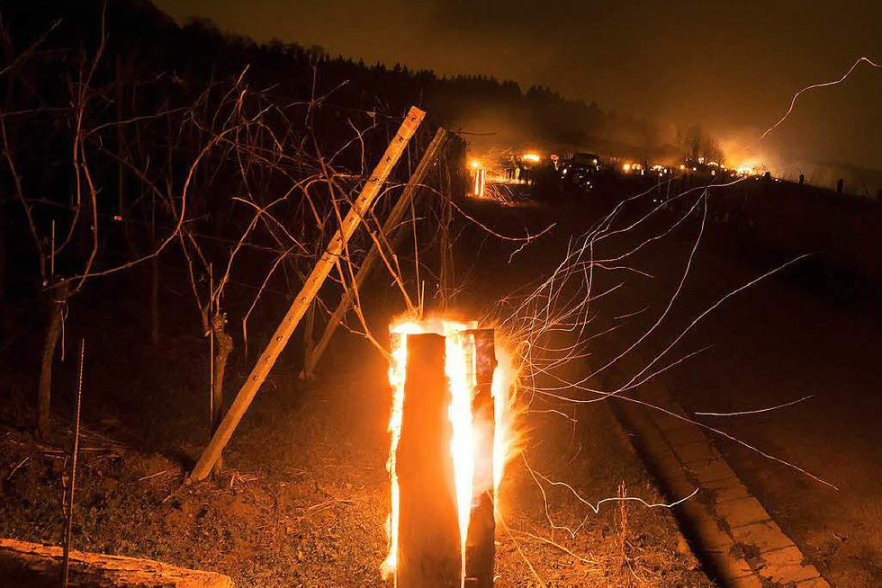 Weinberg in Flammen in Britzingen - Badische Zeitung TICKET