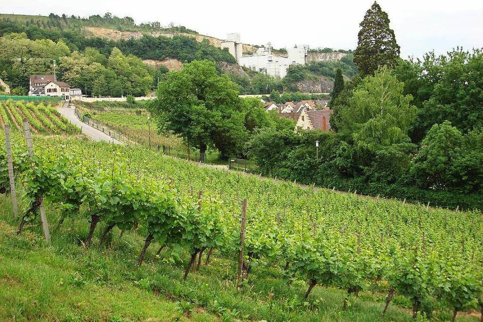 Weingut Kalkwerk Istein - Efringen-Kirchen