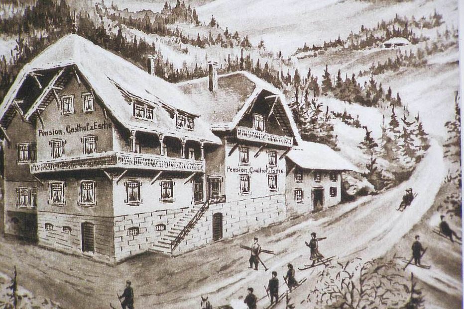 Waldhotel Fehrenbach (Alpersbach) - Hinterzarten