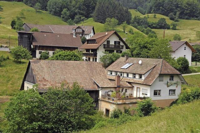 Zukunftsperspektiven auf grünen Hügeln