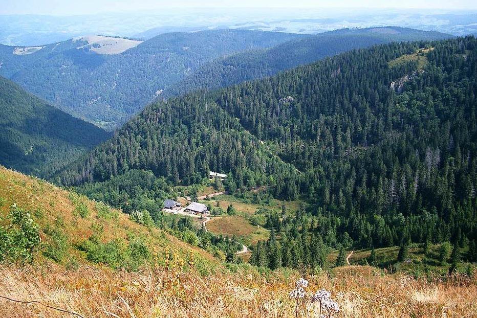 Zastlerhütte - Feldberg