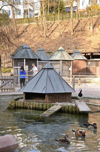 Rosenfelspark - Lörrach