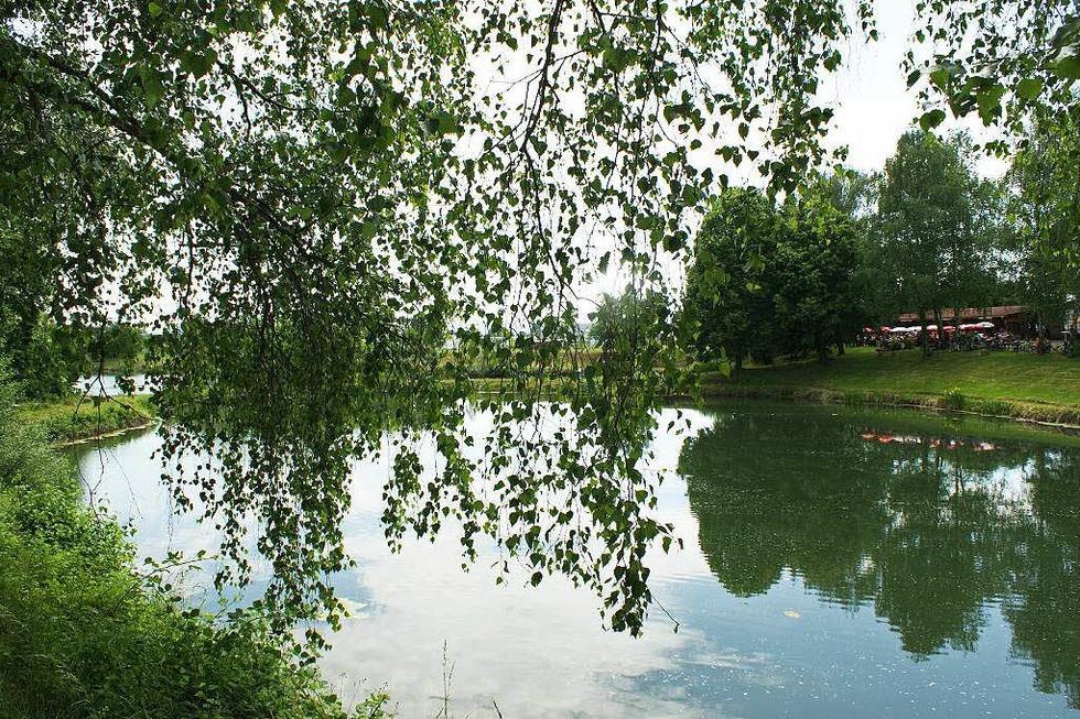 Gehrpfadweiher - Riegel