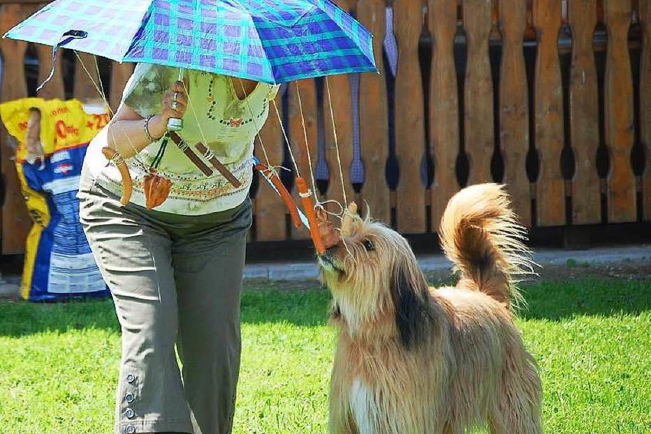 Hundesportplatz - Hausen im Wiesental