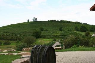 Weingut Berner (Mauchen)