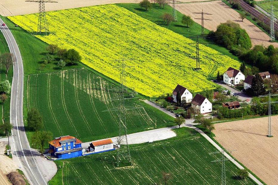 Blauer Bock - Rheinfelden