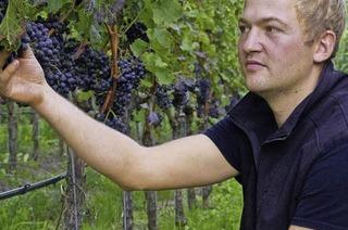 Johannes Landerer (Weingut Landerer in Niederrotweil)