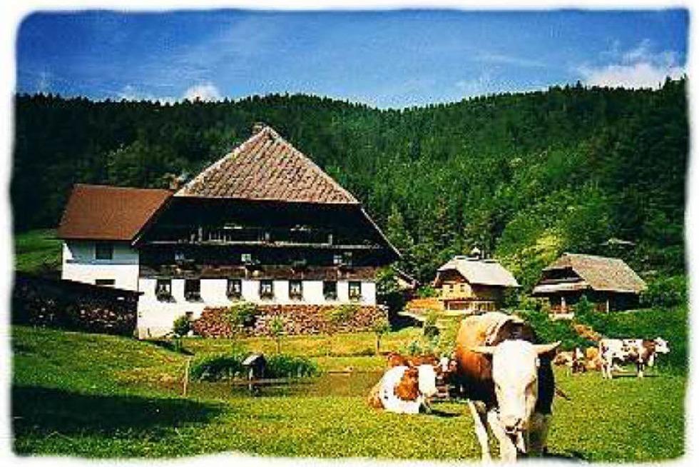 Oberhippensbachhof - Hornberg