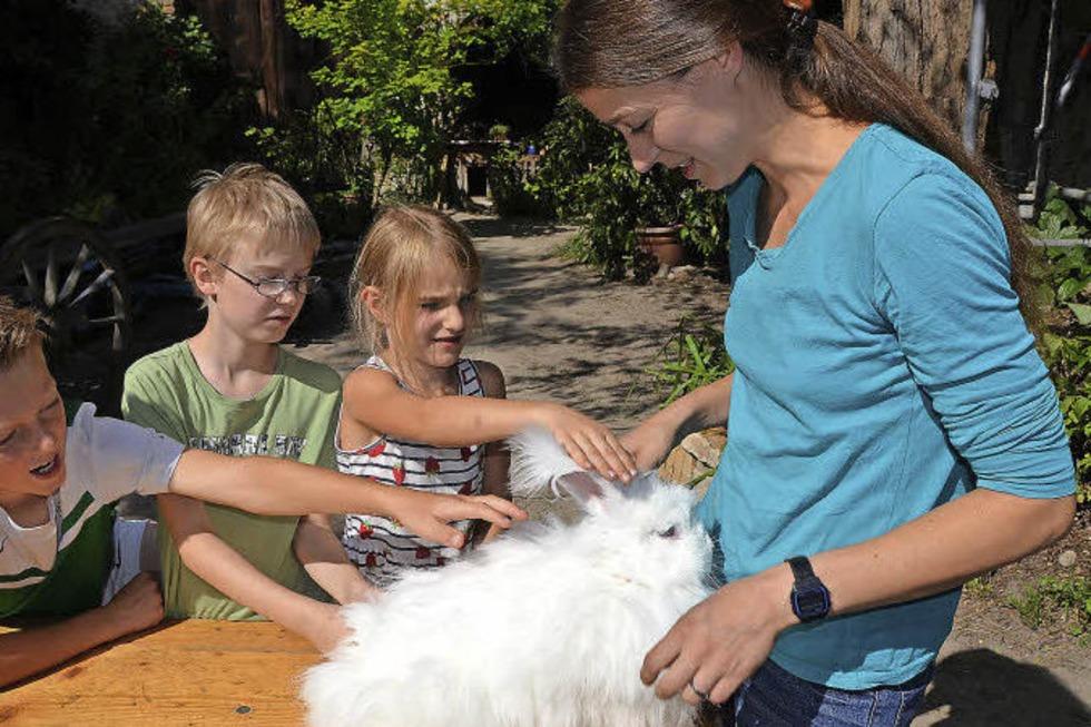 In Opfingen können Kinder seltene Nutztierrassen kennenlernen - Badische Zeitung TICKET