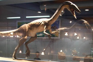 Sauriermuseum Frick
