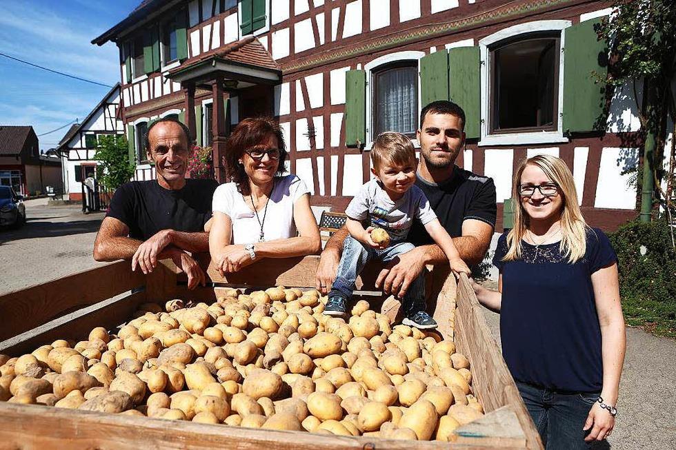 Wurths Kartoffelkiste (Altenheim) - Neuried