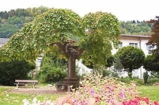 Zeller Stadtpark