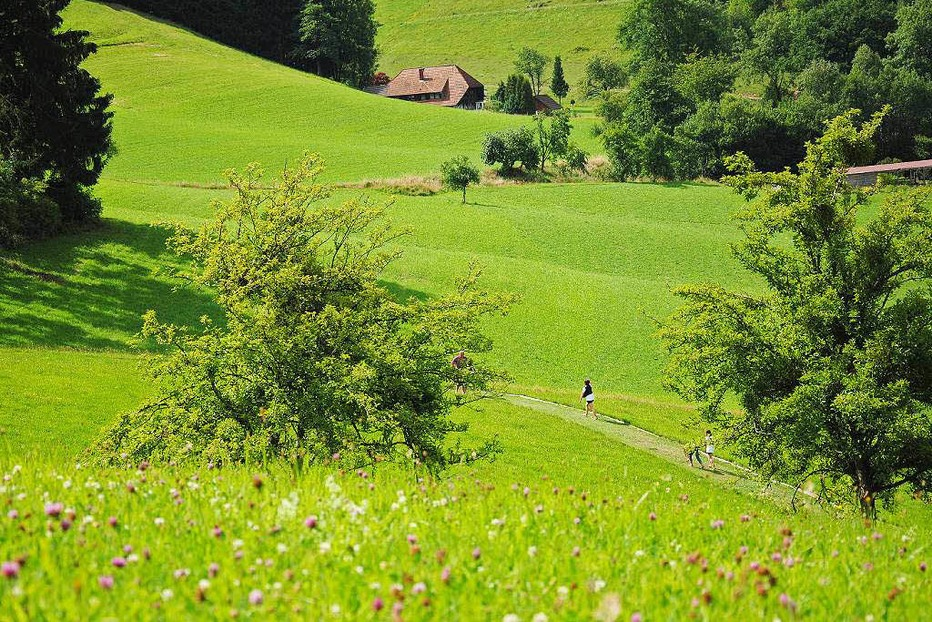 Park mit allen Sinnen - Gutach (Schwarzwaldbahn)