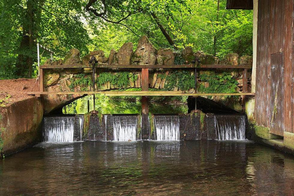 Schlosspark und englischer Garten (Hugstetten) - March