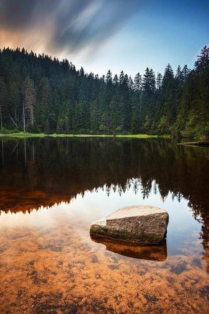 Wilder See - Baiersbronn