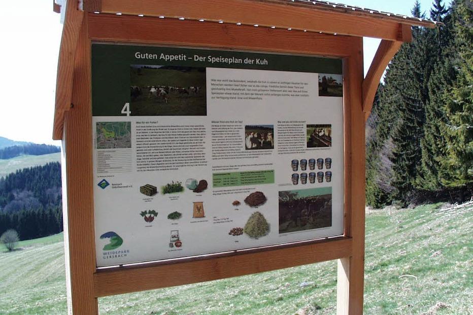 Rinderlehrpfad - Schopfheim