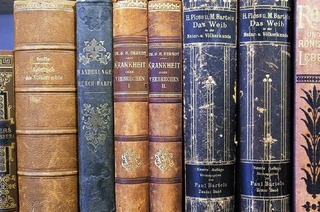 Literaturmuseen