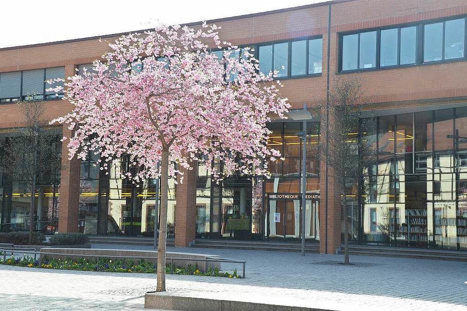 Médiathèque Le Parnasse - Saint-Louis