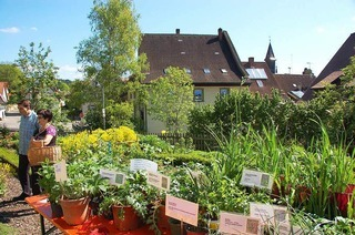 Sch�rgarten des Schwarzwaldvereines