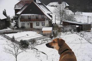 Berggaststätte Kohlerhof