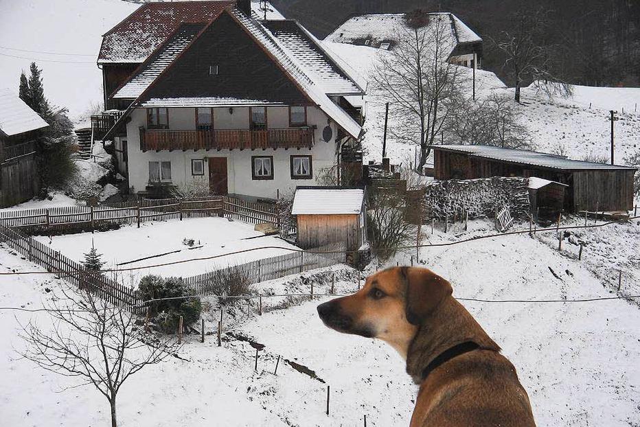 Berggaststätte Kohlerhof - Ehrenkirchen