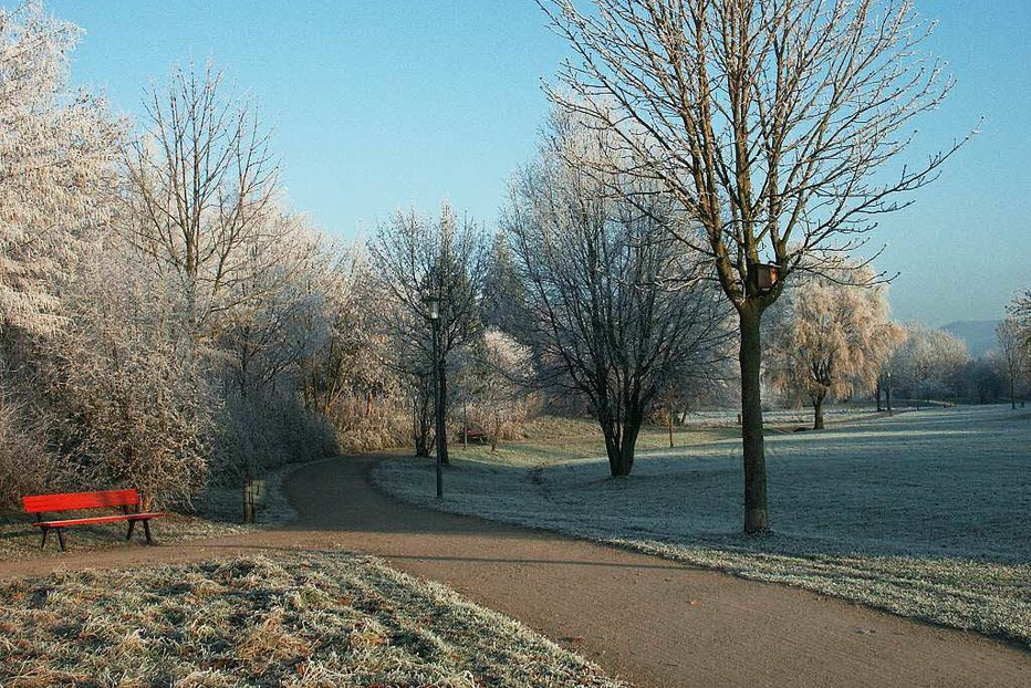 Stadtpark - Denzlingen