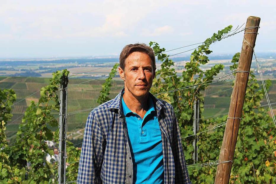 Weingut Heinemann am Batzenberg - Ehrenkirchen